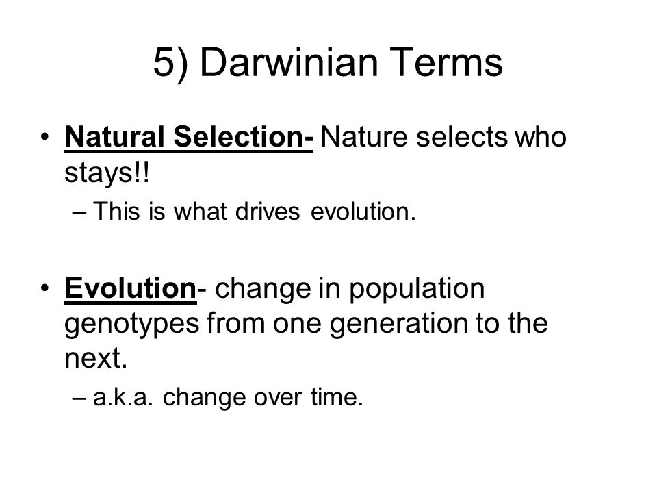 5) Darwinian Terms Natural Selection- Nature selects who stays!! –This is what drives evolution. Evolution- change in population genotypes from one ge