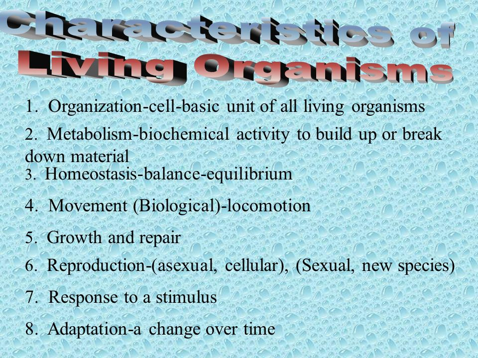 1. Organization-cell-basic unit of all living organisms 3. Homeostasis-balance-equilibrium 4. Movement (Biological)-locomotion 2. Metabolism-biochemic
