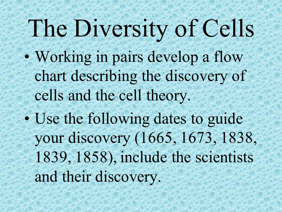 The Diversity of Cells Working in pairs develop a flow chart describing the discovery of cells and the cell theory. Use the following dates to guide y