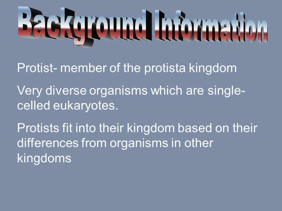 Protist- member of the protista kingdom Very diverse organisms which are single- celled eukaryotes. Protists fit into their kingdom based on their dif