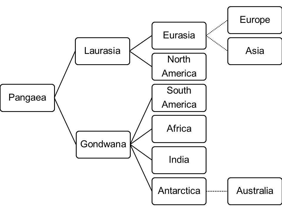 PangaeaLaurasiaEurasiaEuropeAsia North America Gondwana South America AfricaIndiaAntarcticaAustralia
