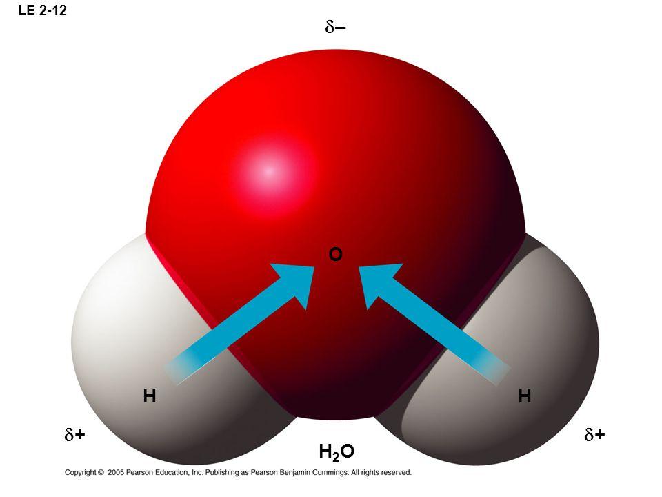 LE 2-12 H O H H2OH2O + + –