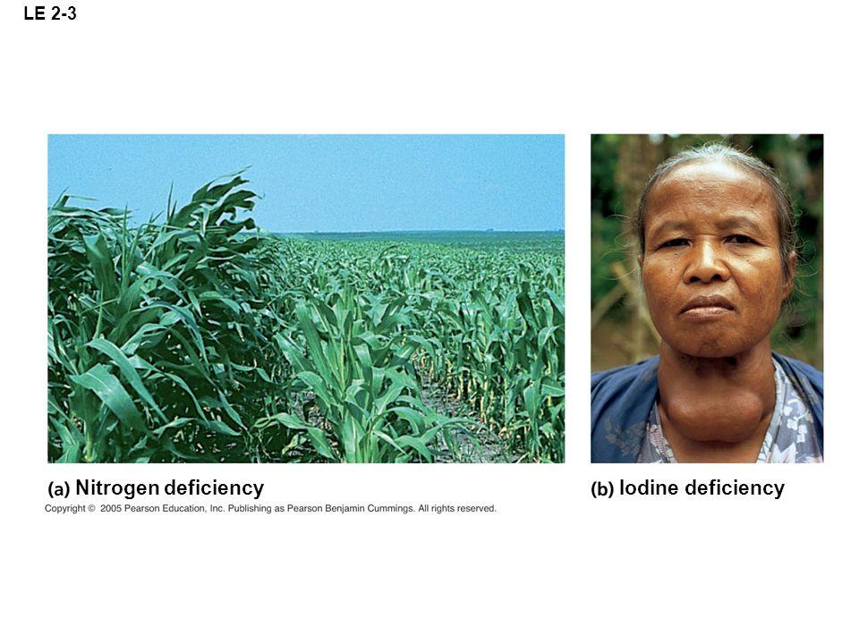 LE 2-3 Nitrogen deficiencyIodine deficiency