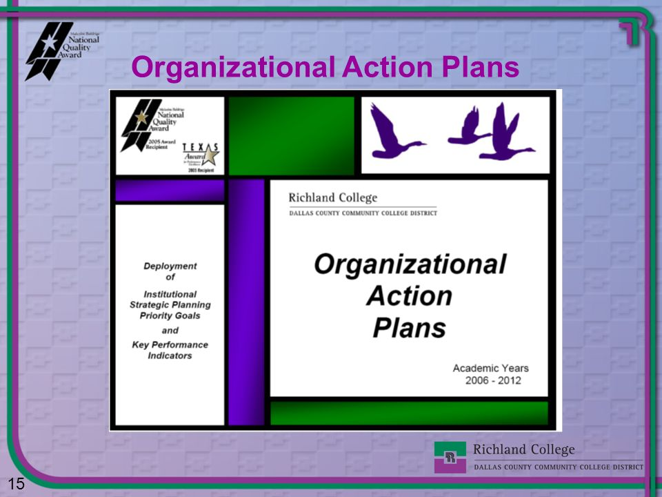 Organizational Action Plans 15