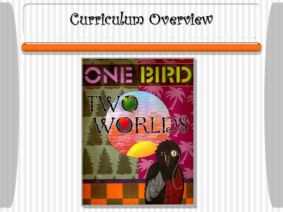 Curriculum Overview