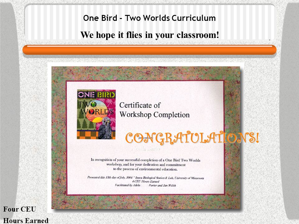One Bird - Two Worlds Curriculum We hope it flies in your classroom! Four CEU Hours Earned CONGRATULATIONS CONGRATULATIONS!