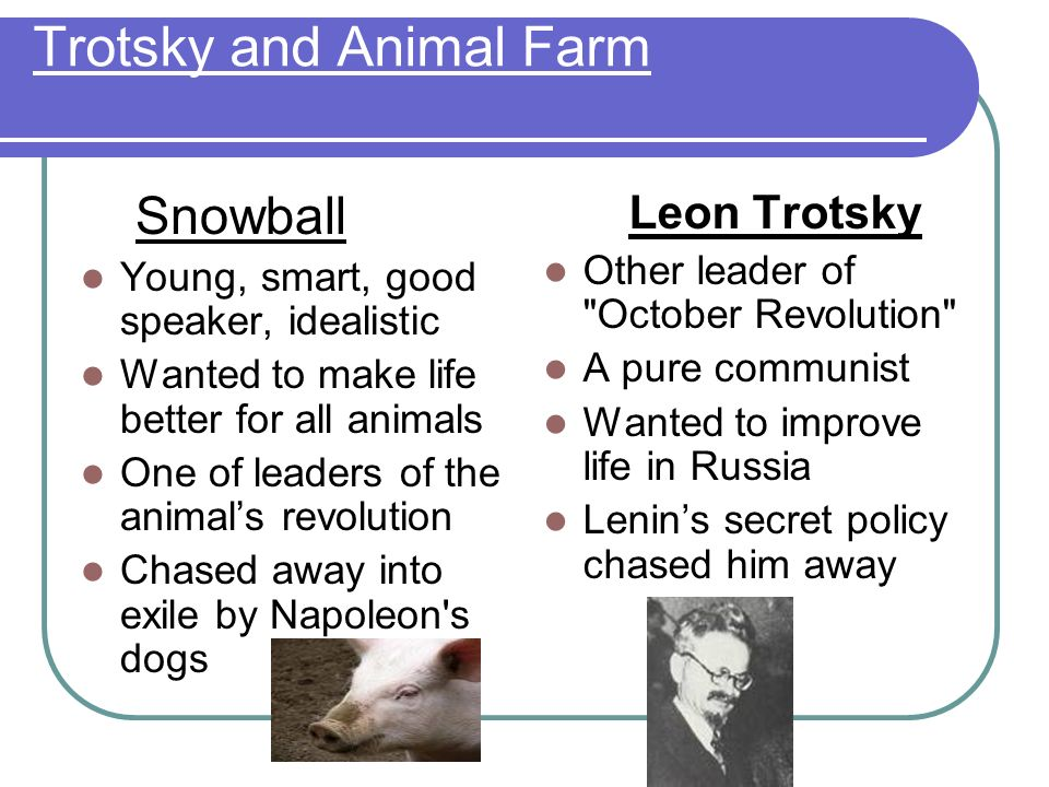 Trotsky and Animal Farm Snowball Young, smart, good speaker, idealistic Wanted to make life better for all animals One of leaders of the animals revolution Chased away into exile by Napoleon s dogs Leon Trotsky Other leader of October Revolution A pure communist Wanted to improve life in Russia Lenins secret policy chased him away