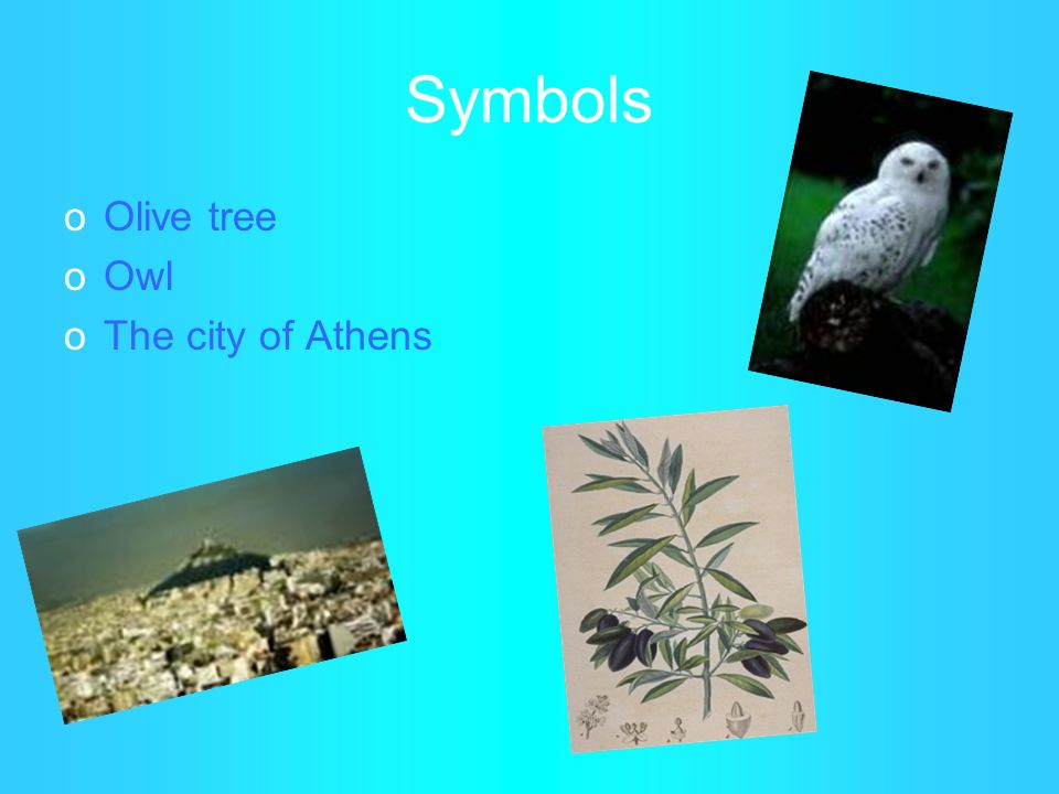 Symbols oOlive tree oOwl oThe city of Athens