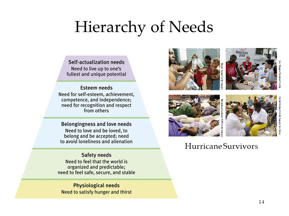 14 Hierarchy of Needs Hurricane Survivors Menahem Kahana/ AFP/ Getty Images Mario Tama/ Getty Images David Portnoy/ Getty Images for Stern Joe Skipper