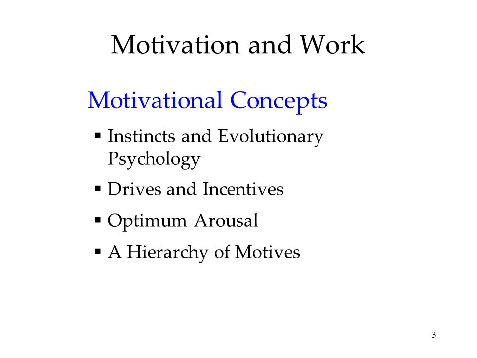 3 Motivation and Work Motivational Concepts Instincts and Evolutionary Psychology Drives and Incentives Optimum Arousal A Hierarchy of Motives