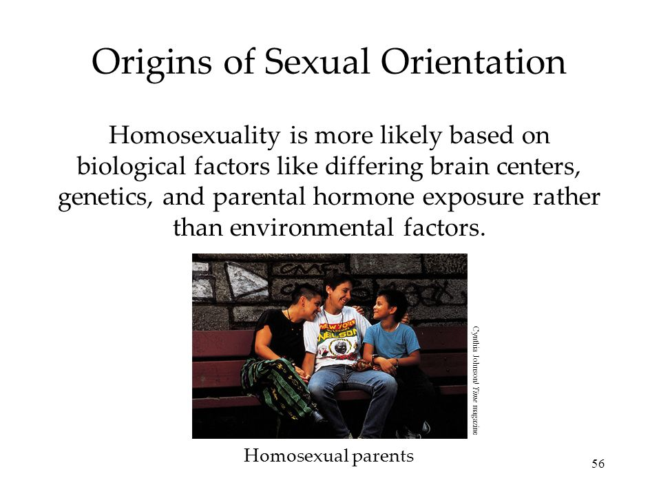 56 Origins of Sexual Orientation Homosexuality is more likely based on biological factors like differing brain centers, genetics, and parental hormone