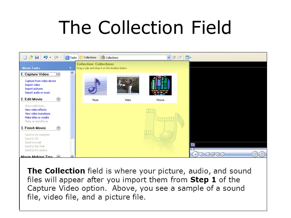 The Collection Field The Collection field is where your picture, audio, and sound files will appear after you import them from Step 1 of the Capture Video option.