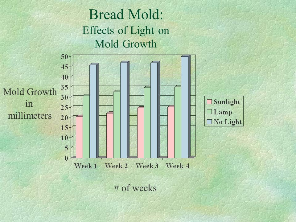 Bread Mold: Effects of Light on Mold Growth Mold Growth in millimeters # of weeks