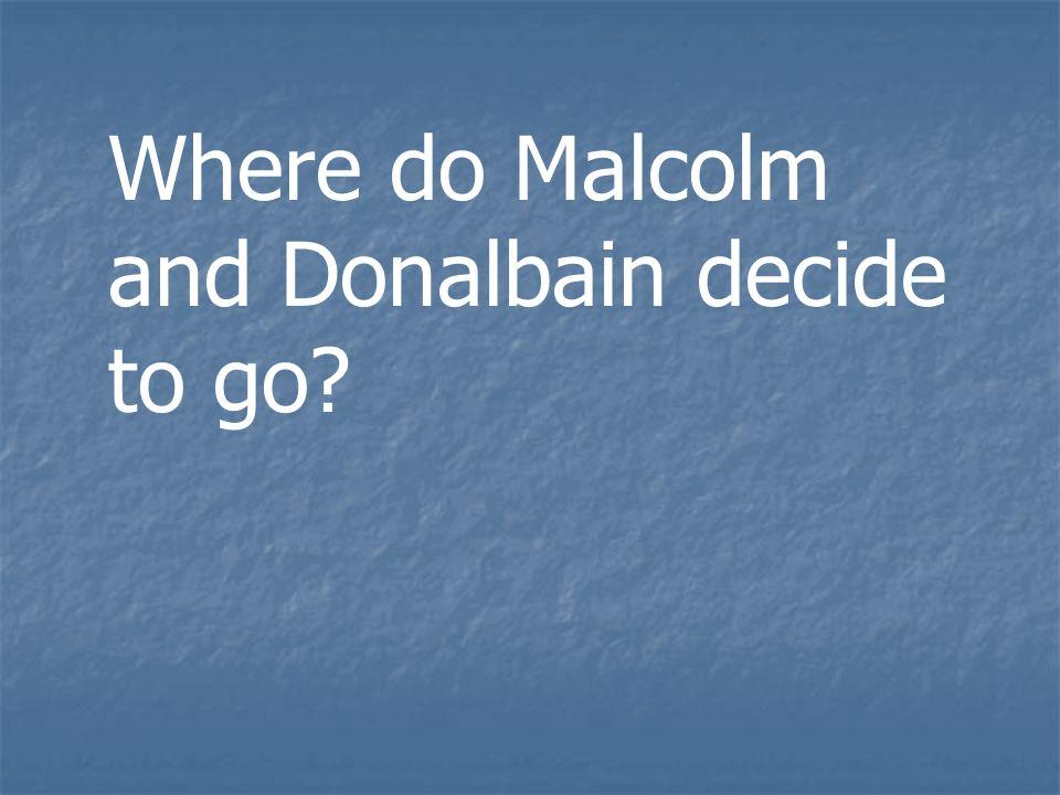 Where do Malcolm and Donalbain decide to go?