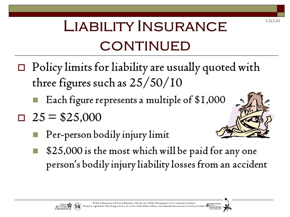 1.16.1.G1 © Family Economics & Financial Education – Revised April 2008– Transportation Unit – Automobile Insurance Funded by a grant from Take Charge