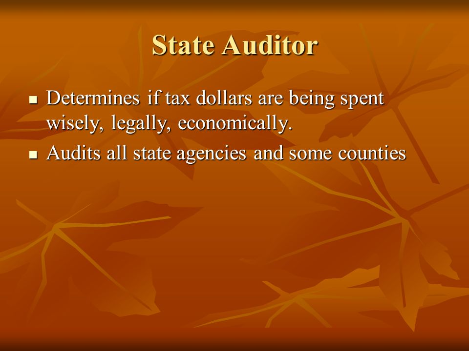 State Auditor Determines if tax dollars are being spent wisely, legally, economically.