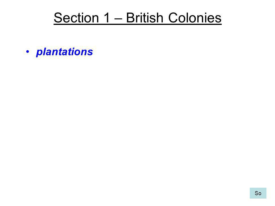 Section 1 – British Colonies plantations So