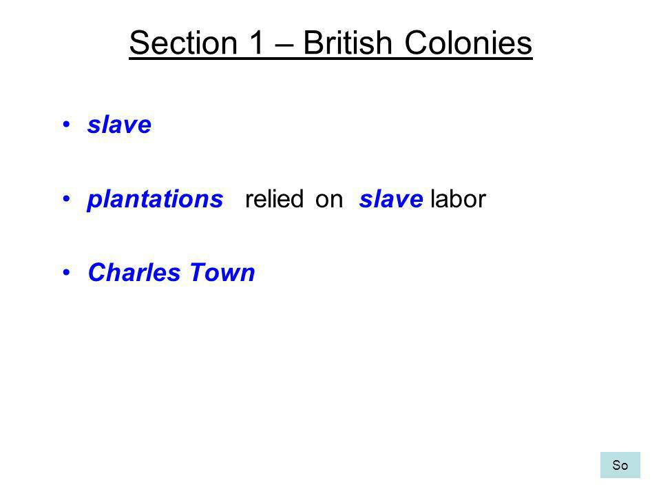 Section 1 – British Colonies slave plantations relied on slave labor Charles Town So