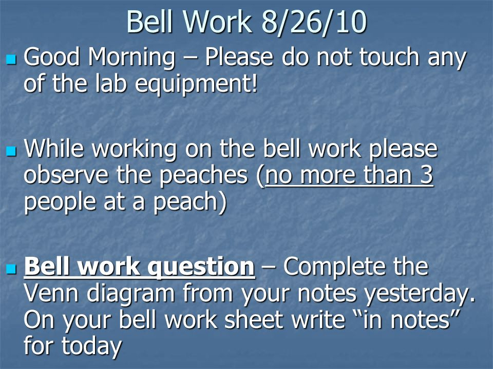 Bell Work 8/26/10 Good Morning – Please do not touch any of the lab equipment! Good Morning – Please do not touch any of the lab equipment! While work