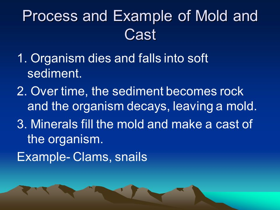 Process and Example of Mold and Cast 1. Organism dies and falls into soft sediment. 2. Over time, the sediment becomes rock and the organism decays, l