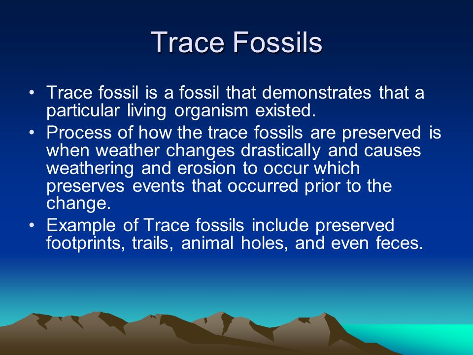 Trace Fossils Trace fossil is a fossil that demonstrates that a particular living organism existed. Process of how the trace fossils are preserved is