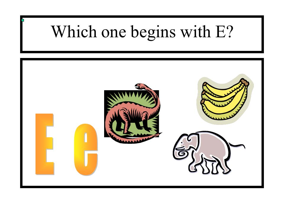 Which one begins with E?
