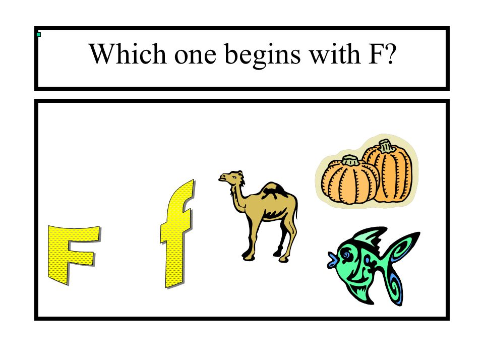 Which one begins with F?