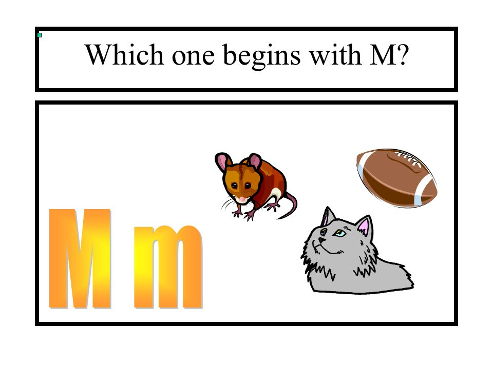 Which one begins with M?