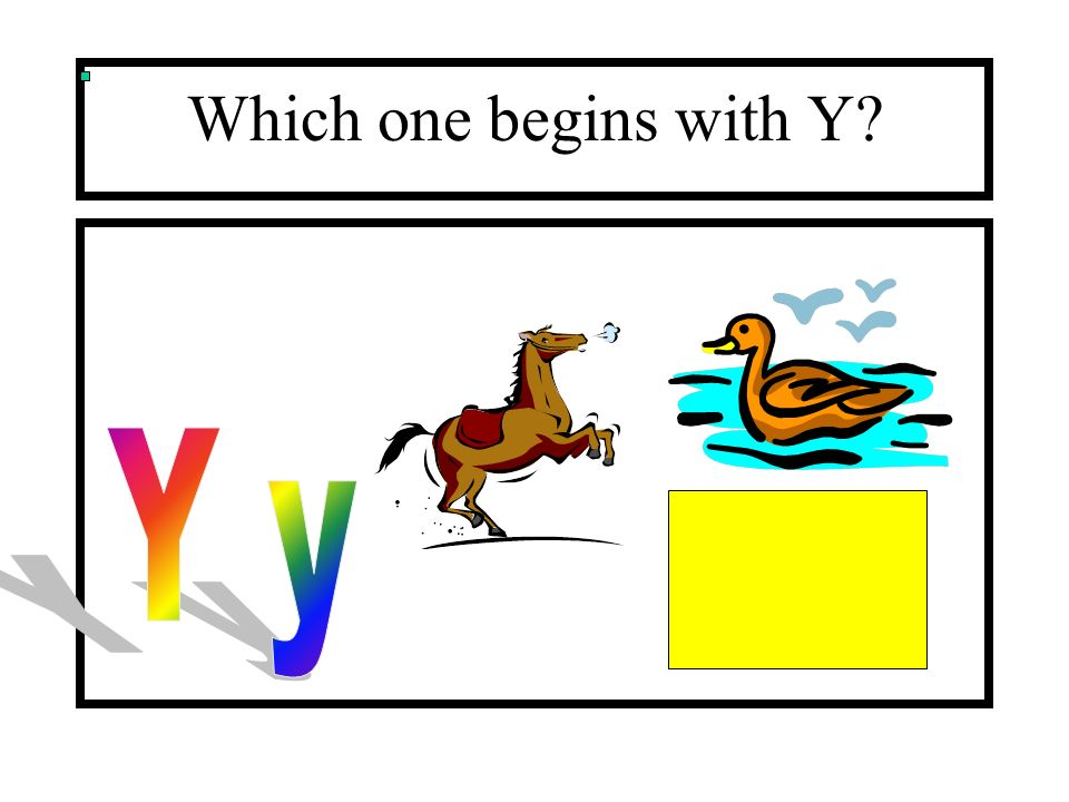 Which one begins with Y?