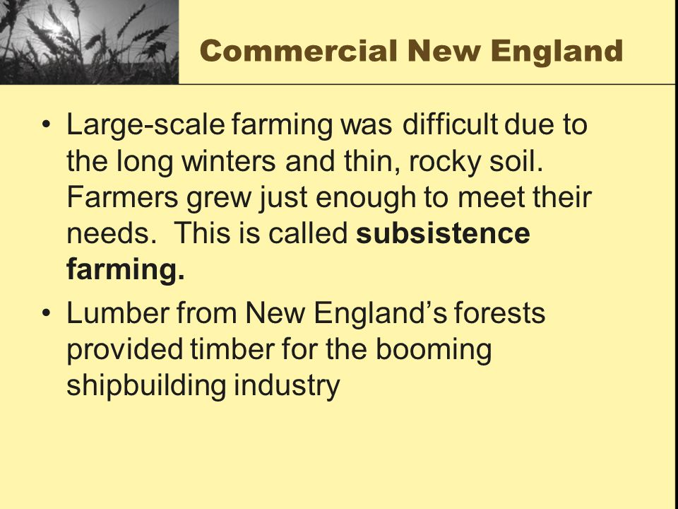 Commercial New England Large-scale farming was difficult due to the long winters and thin, rocky soil. Farmers grew just enough to meet their needs. T