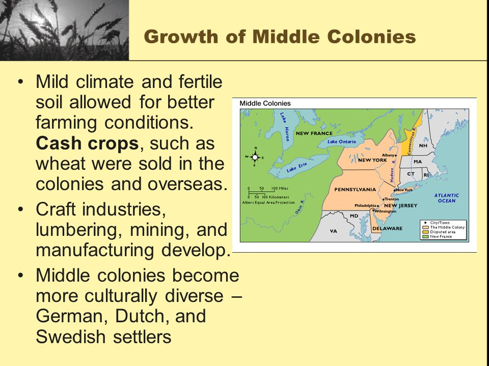 Growth of Middle Colonies Mild climate and fertile soil allowed for better farming conditions. Cash crops, such as wheat were sold in the colonies and