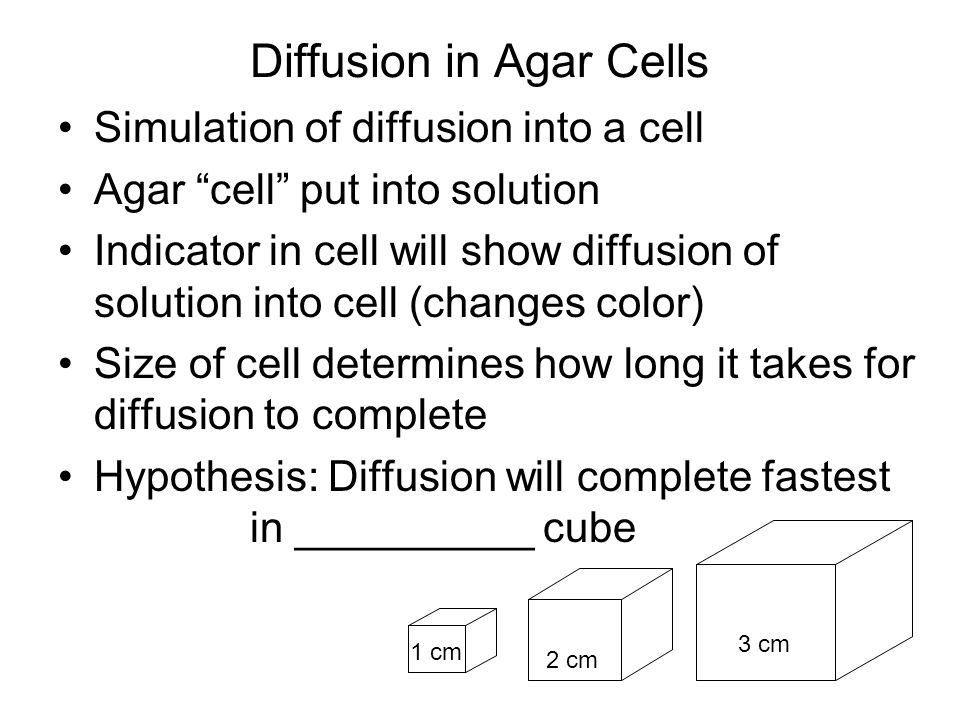Diffusion in Agar Cells Simulation of diffusion into a cell Agar cell put into solution Indicator in cell will show diffusion of solution into cell (c