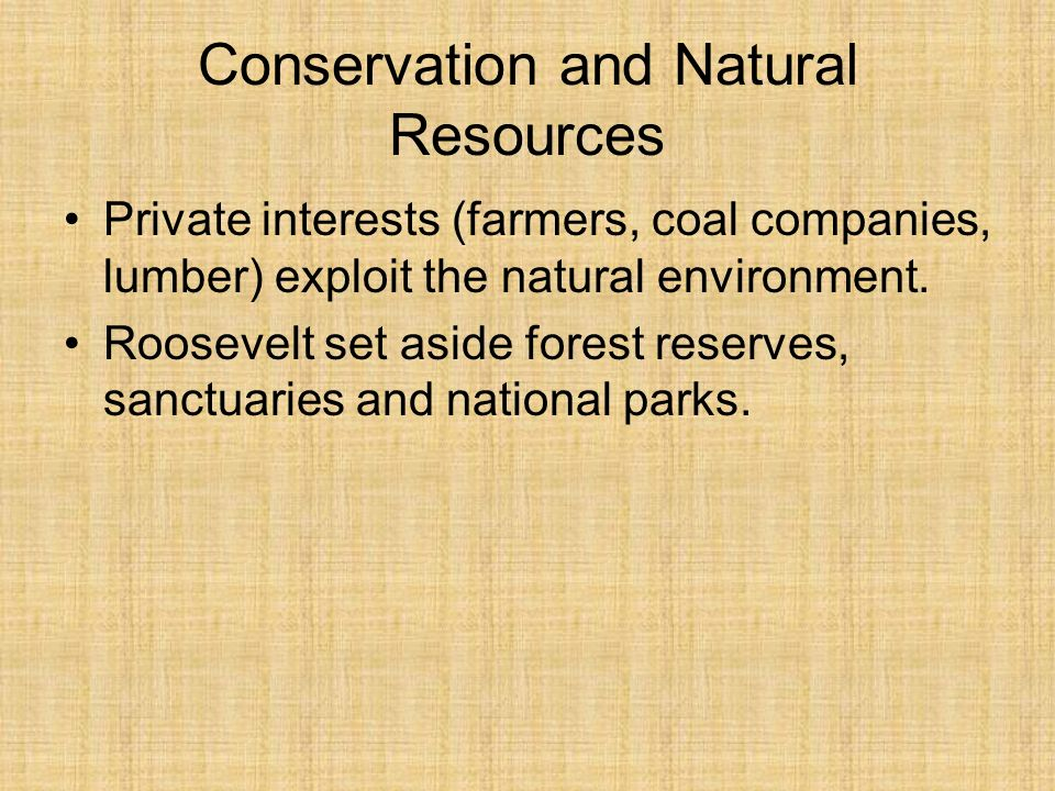 Conservation and Natural Resources Private interests (farmers, coal companies, lumber) exploit the natural environment. Roosevelt set aside forest res