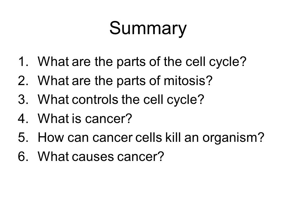 Summary 1.What are the parts of the cell cycle. 2.What are the parts of mitosis.