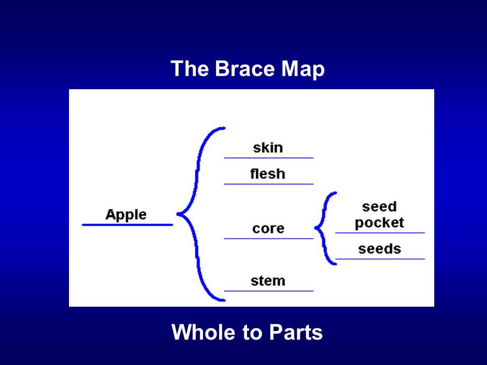 Whole to Parts The Brace Map
