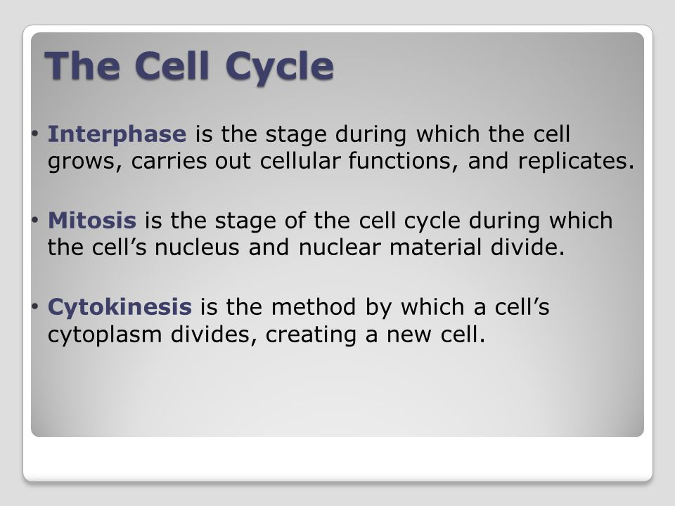 Interphase is the stage during which the cell grows, carries out cellular functions, and replicates.