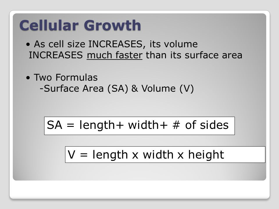 As cell size INCREASES, its volume INCREASES much faster than its surface area Two Formulas -Surface Area (SA) & Volume (V) SA = length+ width+ # of sides V = length x width x height Cellular Growth