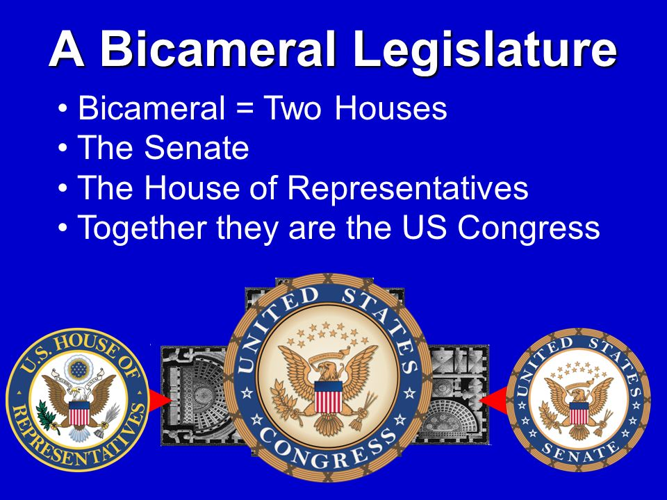 A Bicameral Legislature Bicameral = Two Houses The Senate The House of Representatives Together they are the US Congress