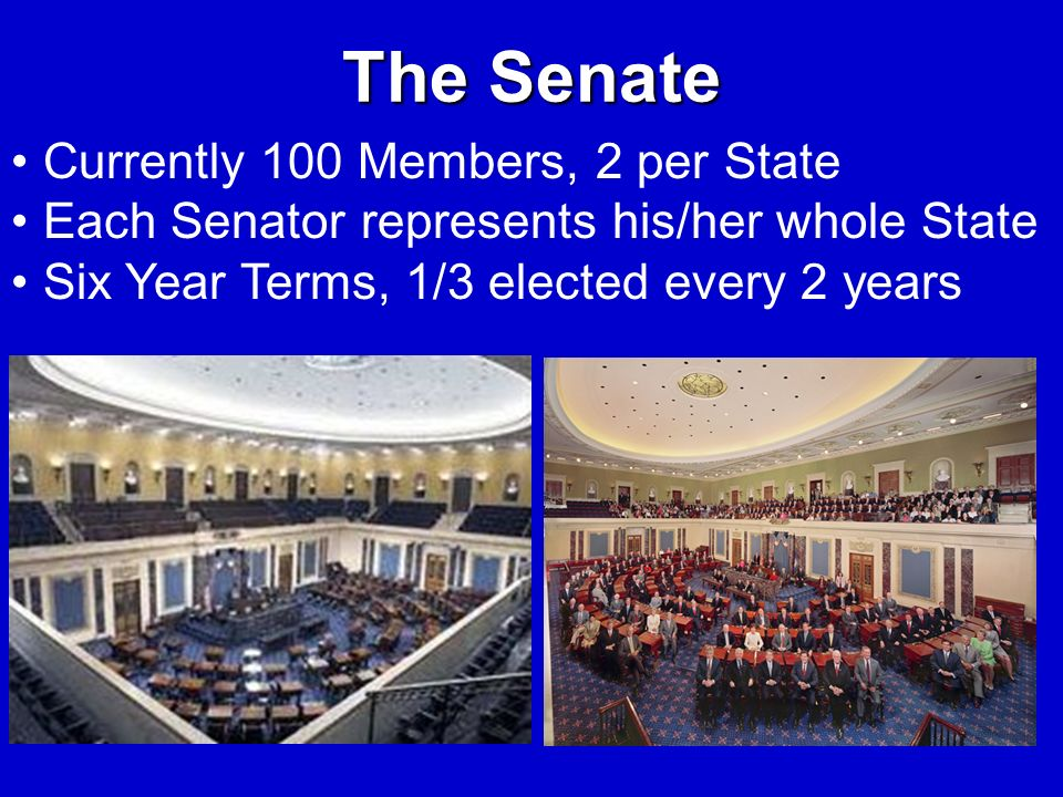 The Senate Currently 100 Members, 2 per State Each Senator represents his/her whole State Six Year Terms, 1/3 elected every 2 years
