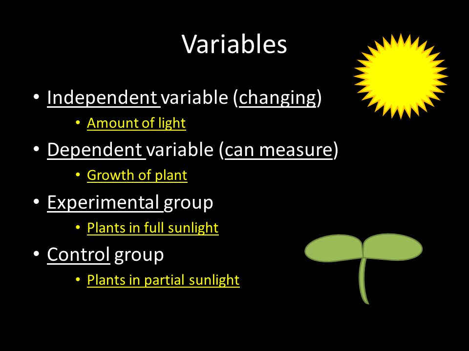 Variables Independent variable (changing) Amount of light Dependent variable (can measure) Growth of plant Experimental group Plants in full sunlight