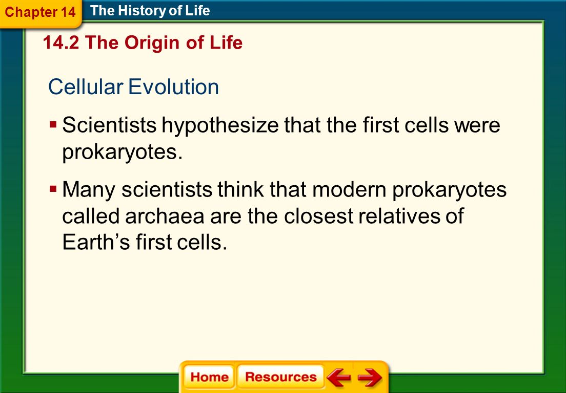 Cellular Evolution The History of Life Scientists hypothesize that the first cells were prokaryotes. Many scientists think that modern prokaryotes cal