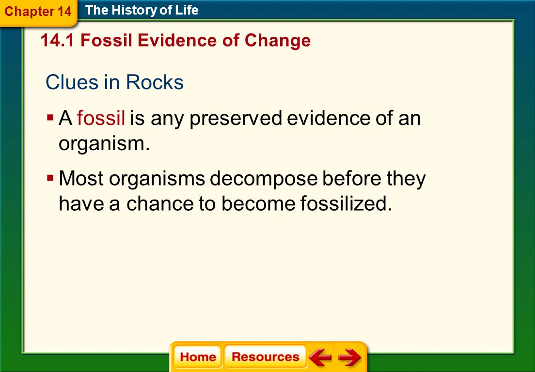 Clues in Rocks The History of Life A fossil is any preserved evidence of an organism. Most organisms decompose before they have a chance to become fos