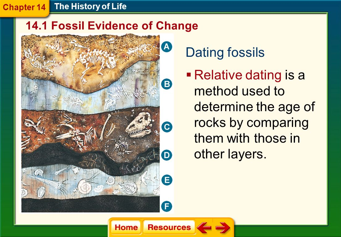 Dating fossils The History of Life Relative dating is a method used to determine the age of rocks by comparing them with those in other layers. 14.1 F