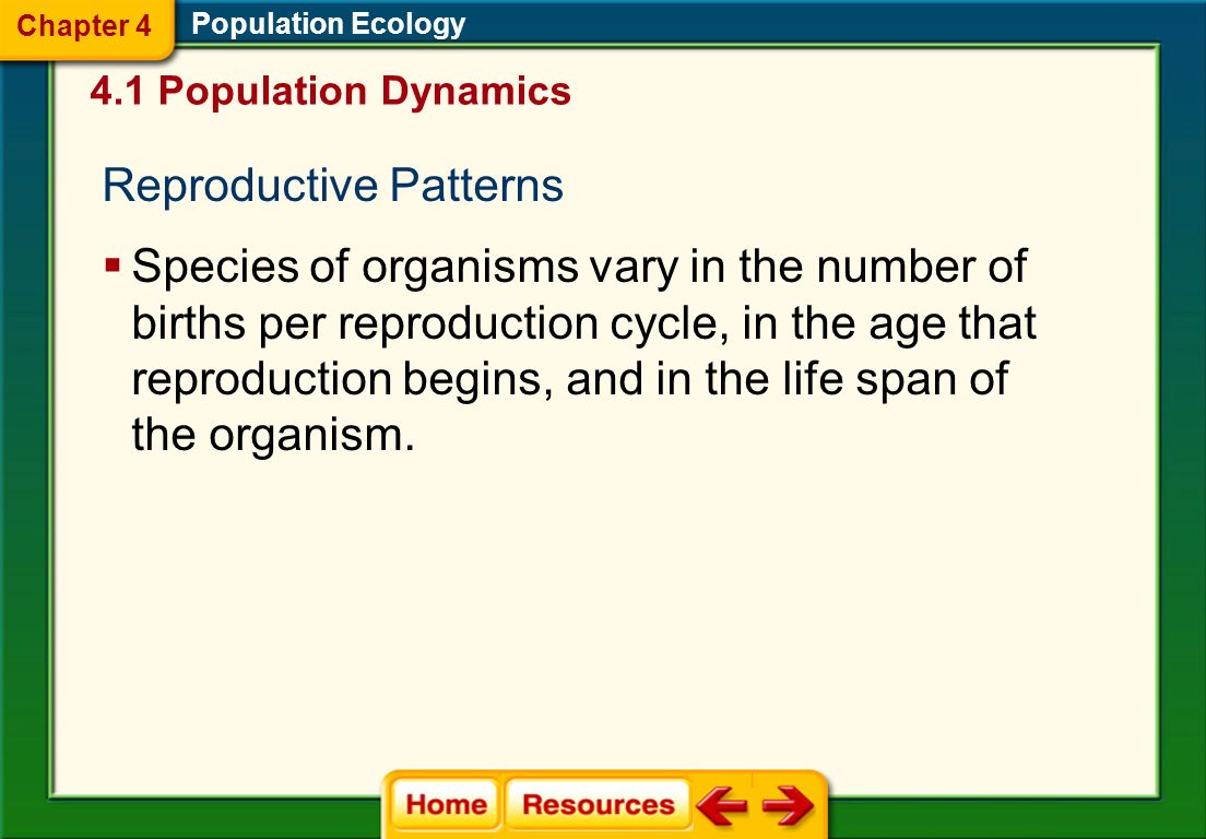 Population Ecology 4.1 Population Dynamics Chapter 4 A population stops increasing when the number of births is less than the number of deaths or when