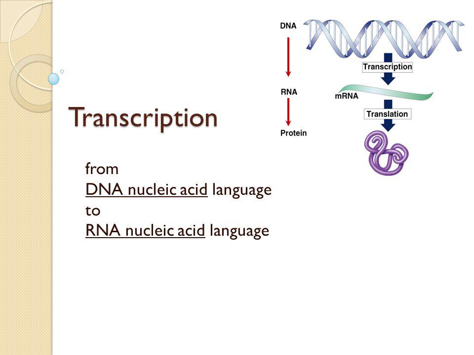 Fig. 17-6 (a) Tobacco plant expressing a firefly gene (b) Pig expressing a jellyfish gene