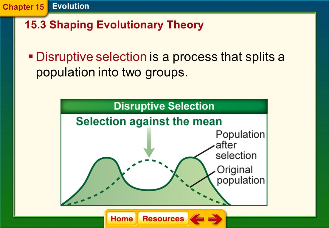 Evolution Stabilizing selection operates to eliminate extreme expressions of a trait when the average expression leads to higher fitness. 15.3 Shaping