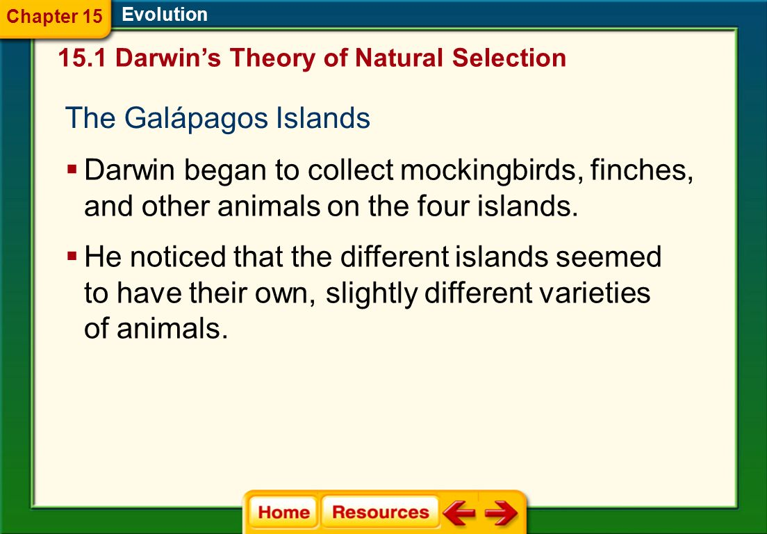The Galápagos Islands Evolution Darwin began to collect mockingbirds, finches, and other animals on the four islands.