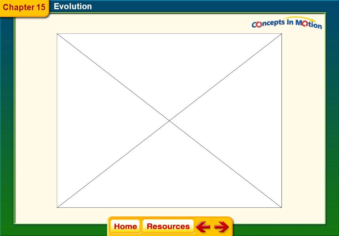 1.A 2.B 3.C 4.D FQ 10 Evolution Chapter 15 A.genes B.