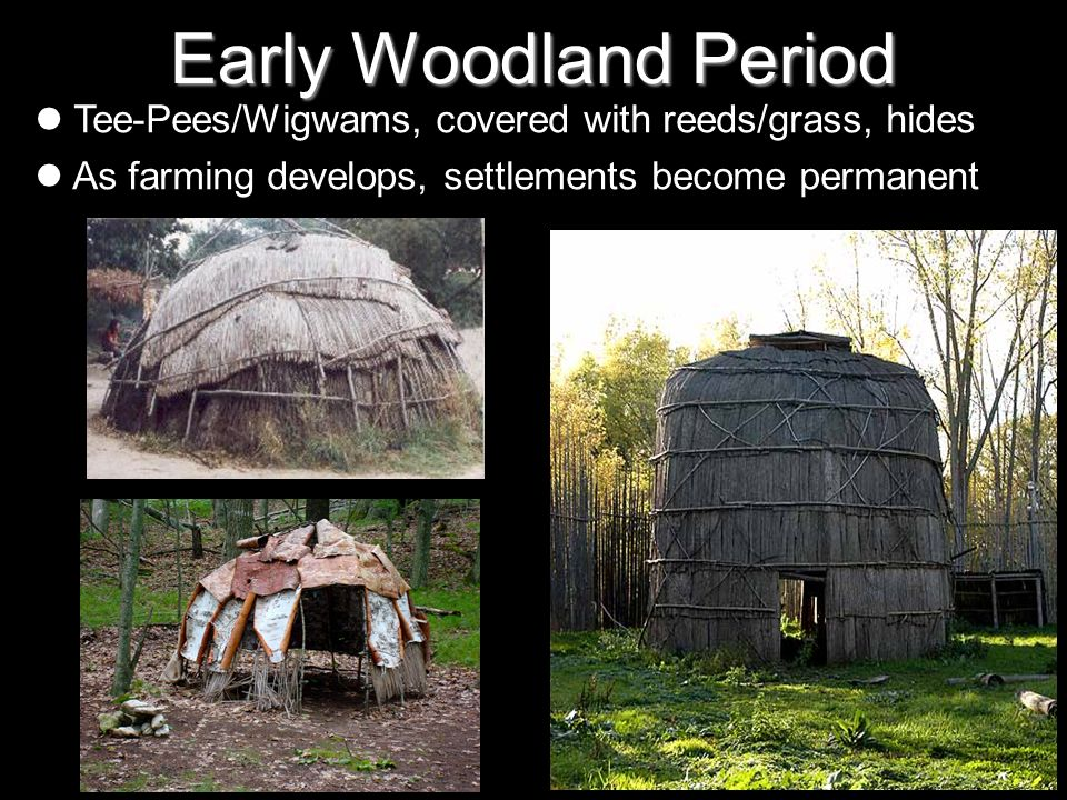 Early Woodland Period Tee-Pees/Wigwams, covered with reeds/grass, hides As farming develops, settlements become permanent