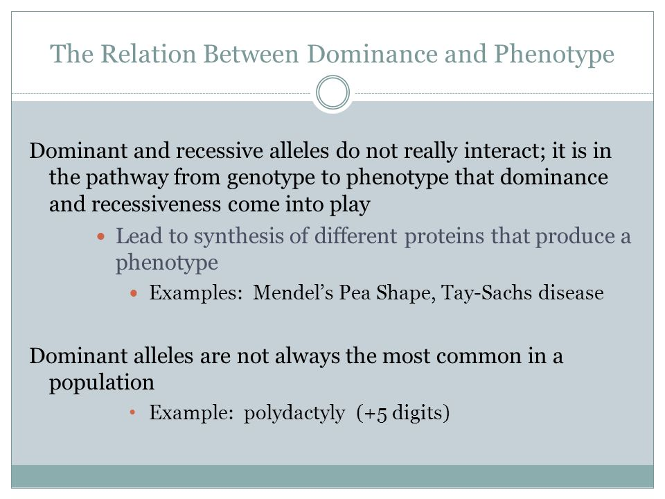 The Relation Between Dominance and Phenotype Dominant and recessive alleles do not really interact; it is in the pathway from genotype to phenotype th